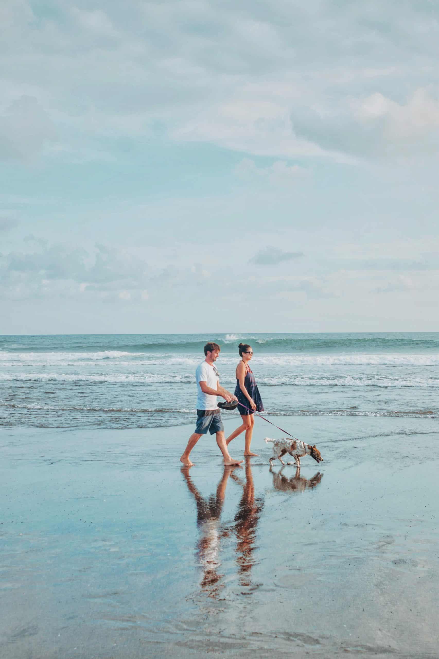 couple walking dog on a beach