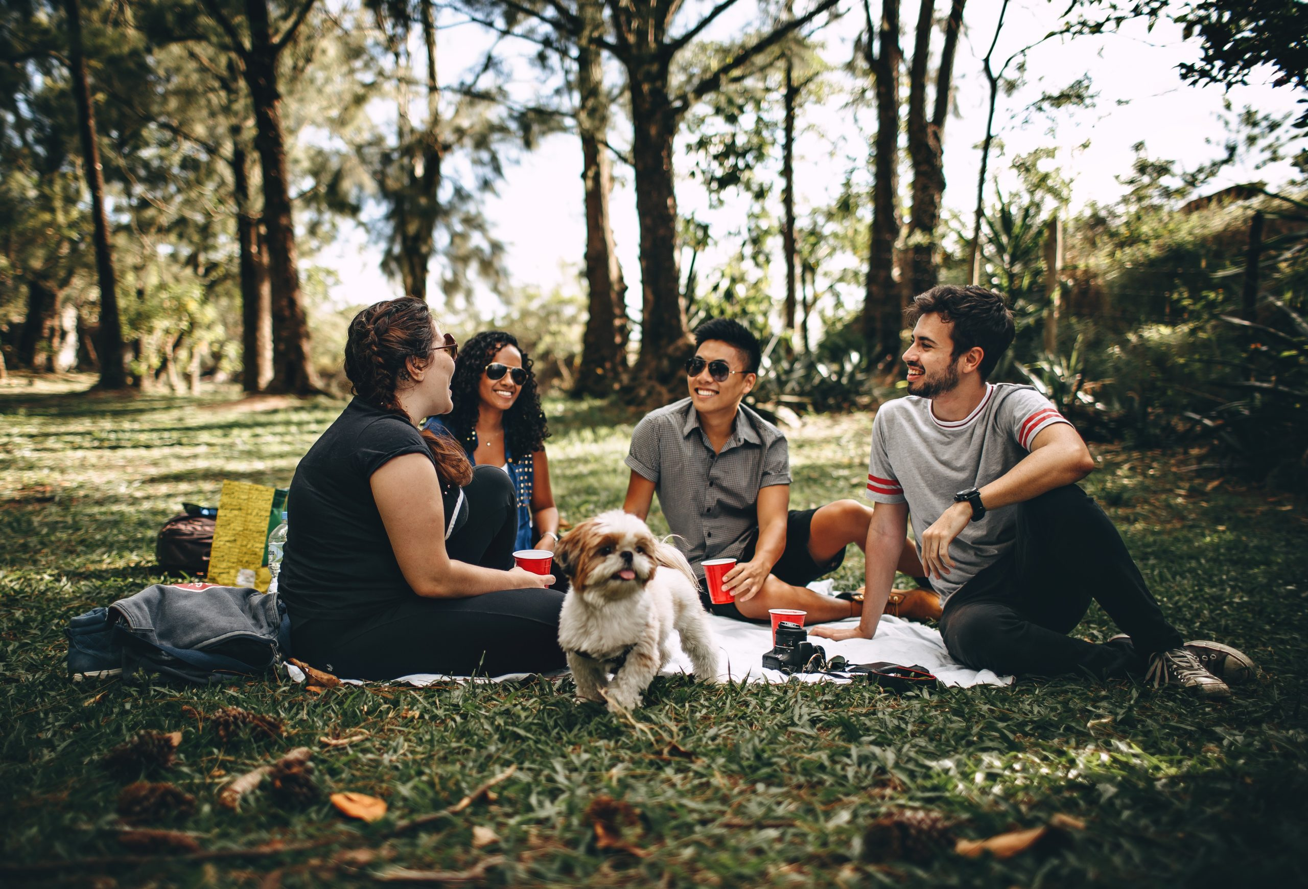 Group of people laying on blanket with dog